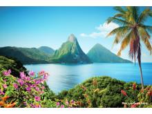 Dramatiske fjellsider stuper ned i knallturkist hav på vakre St. Lucia.