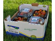 Klimatcertifierad tomatmix från Nya Askeby Trädgård