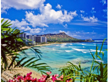 Bravo Tours Hawaii Waikiki