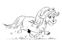 Miljösnillet Millan - en av hästnäringens nya superstjärnor