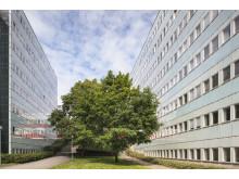 Södra Huset, Frescati, Stockholms universitet