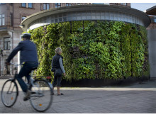 Vertikal trädgård i Helsingborg_Fotograf Eva Lie