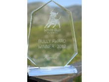 2012 Bully Awards