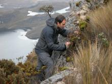 Alexandre Antonelli i Anderna, Ecuador