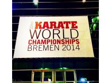 VM Karate 2014