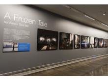 """Utställning """"A Frozen Tale""""_1"""
