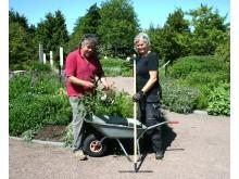 Ulf Strindberg och Mona Holmberg, trädgårdskonsulenter Värdens Park