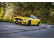 Ny Mustang Fastback