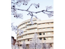 JIBS Vinter