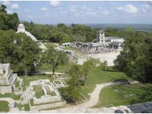 Bravo Tours Mexico Palenque