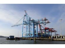 Containerterminalen, APM Terminals, Göteborgs Hamn