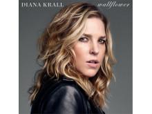 Diana Krall - Wildflower
