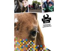 Ny tidning om året 2013 med Upplev Häst