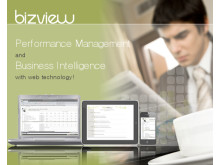 BizView - Performance Management and Business Intelligence with web technology