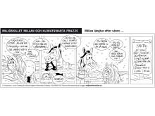 Varför har Millan tröttnat på kylan?  Se efter själv i Millans och Frazzes seriestripp del 3
