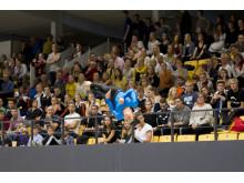 Höganäs GF under NM i truppgymnastik 2013