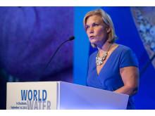 Hon. Ms. Gunilla Carlsson, Minister for International Development Cooperation, Sweden