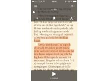 Ljudbokstjänsten Storytel lanserar sömlös boktjänst