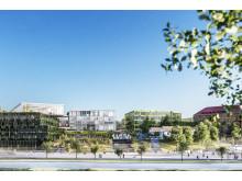 Campus Näckrosen, Göteborgs universitet, parallella uppdrag Korsvägen, Wingårdh arkitektkontor