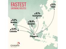 #Changi2015 - Fastest Growing Routes