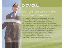 BizView - When you need support in your performance management