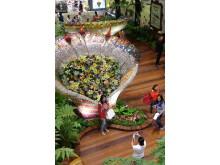 The Enchanted Garden 02