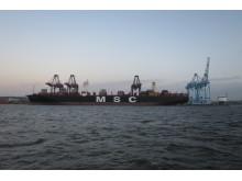 MSC Maya i Skandiahamnen 2