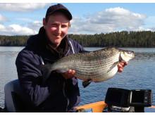 Nytt sportfiskerekord på sik