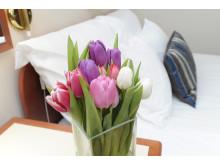 Hotell Focus i Örnsköldsvik är nya medlemmar i Sweden Hotels