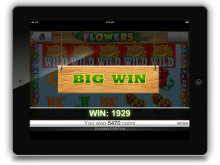 Flowers Casino Ipad