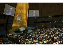 Generalforsamlingen fordømmer volden i Syria