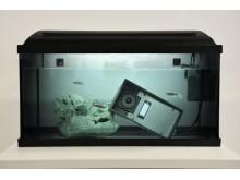 COBS nya porttelefon från 2N, Helios IP-Force