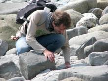 Dr Daniele Silvestro; Post-doktorand vid Göteborgs universitet och universitet i Lausanne, Schweiz