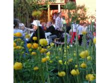 Trädgårdsservering Dala-Floda Värdshus