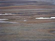 Bild från forskningsexpedition för att undersöka permafrostens utbredning