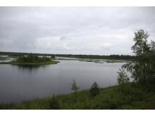 Jämtkraft besökte återställd torvmyr i Finland