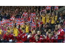 Publikum handball VM