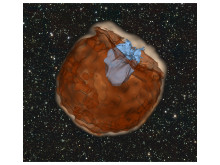 Image made out of a simulation of a Type Ia supernova explodes (as shown in the dark brown color). Courtesy of Dan  Kasen.