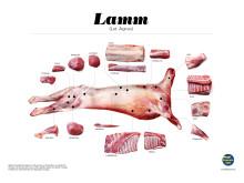 Styckningsschema för restaurang - lamm ej senaste version