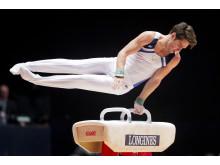 Michael Trane, VM i artistisk gymnastik 2015