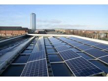 Solceller på Högskolan i Halmstad