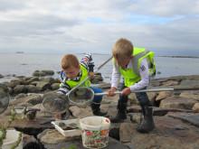 Årets Vattenskola 2014 - Falkenbergs Montessoriskola