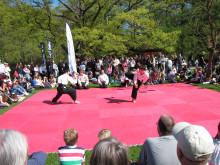 Japansk kampsport i Botaniska