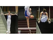 VM-laget manlig artistisk gymnastik