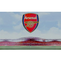 Arsenal to launch stadium tours in Portuguese for Brazilian visitors, produced by imagineear