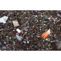 Skräprapporten 2015: Skräpet i havet kommer från land