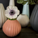 Forleng sommeren med fargerike blomster i alle vaser