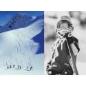6 favoriter i Alperna