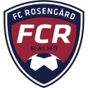 System Verification satsar socialt – blir sponsor åt FC Rosengård
