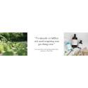 Framtidens rengöring - med städande bakterier och bioteknik